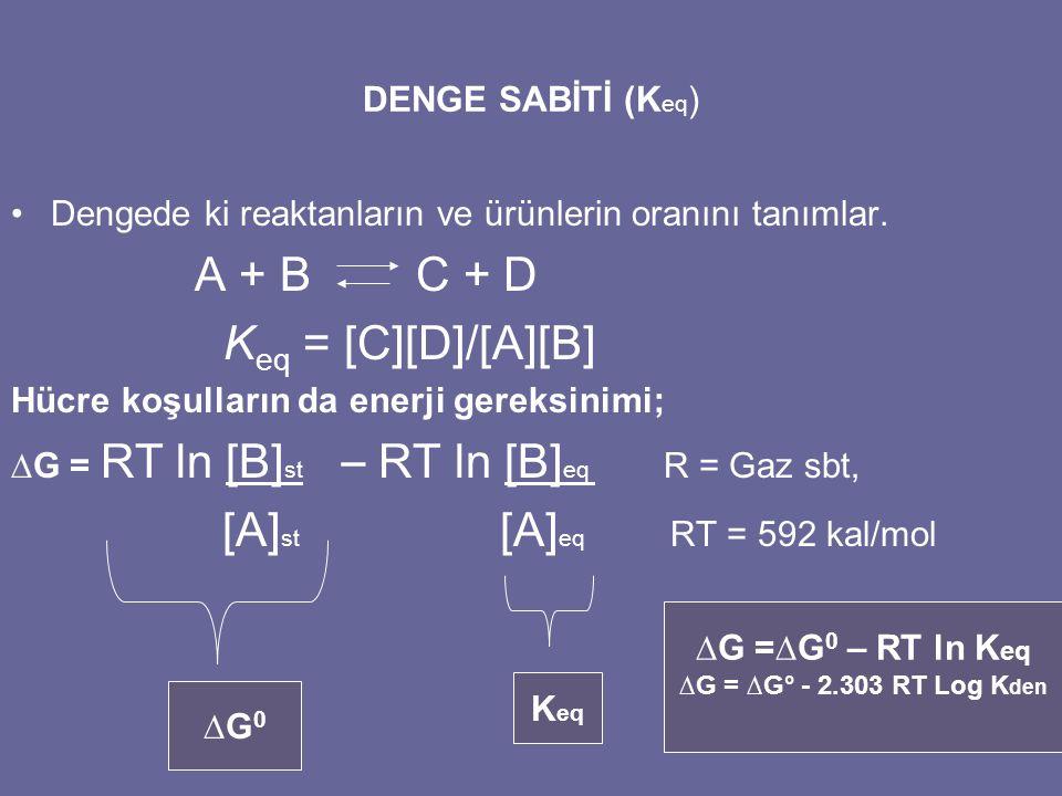 [A]st [A]eq RT = 592 kal/mol